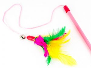 feather cat toy on a string