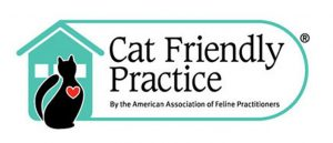 An increasing number of veterinarians are starting to change the way they treat cats through the innovative Cat Friendly Practice® program.