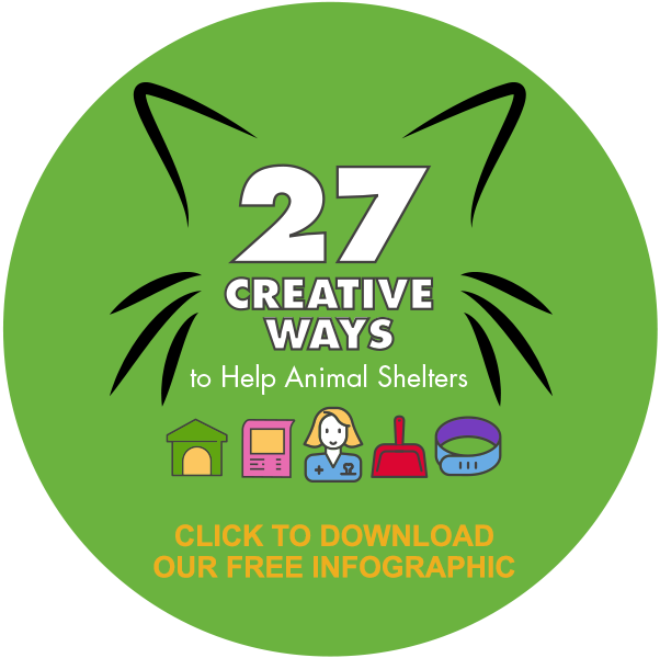 27 Creative Ways to Help Animal Shelters: Click to Download Our Free Infographic