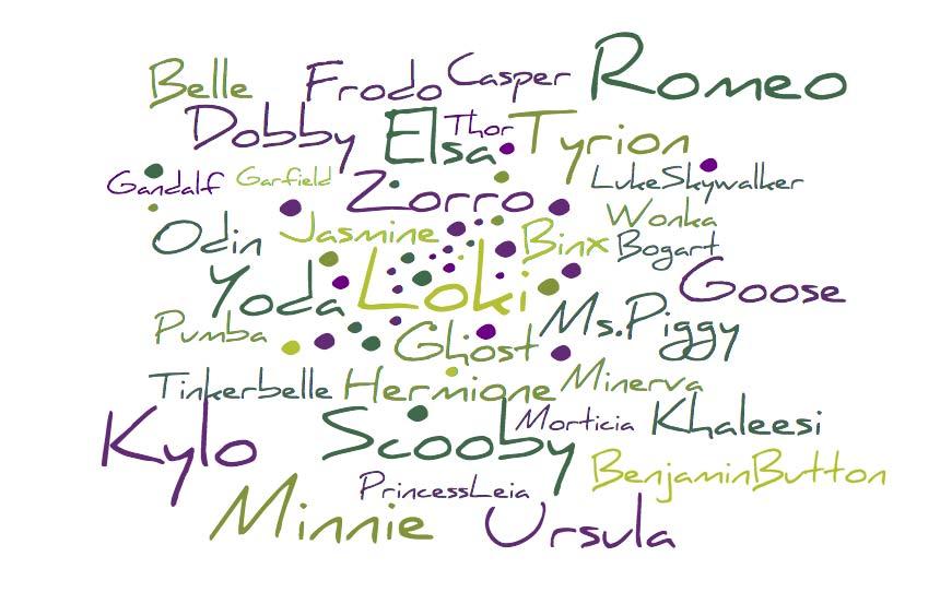 •Belle •Benjamin Button •Binx •Bogart •Casper •Dobby •Elsa •Frodo •Gandalf •Garfield •Goose •Ghost •Hermione •Jasmine •Khaleesi •Kylo •Luke Skywalker •Loki •Minnie •Ms. Piggy •Minerva •Morticia •Odin •Pumba •Princess Leia •Romeo •Scooby •Tinkerbelle •Thor •Tyrion •Ursula •Wonka •Yoda •Zorro