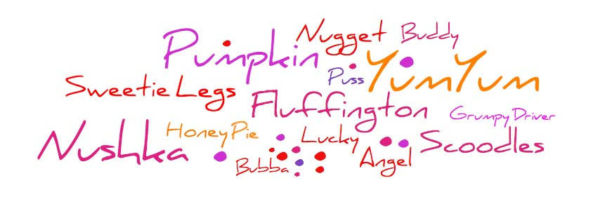 •Angel •Buddy •Bubba •Fluffington •Grumpy Driver •Honey Pie •Lucky •Nugget •Nushka •Pumpkin •Puss •Sweetie Legs •Scoodles •YumYum