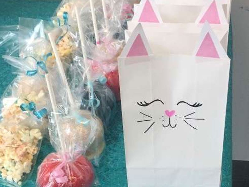 paper bags with cat faces on them